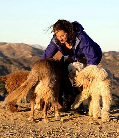 Shewhisperer Dog Training Sonoma County, Jill Breitner