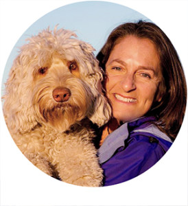 Shewhisperer Dog Training, Jill Breitner