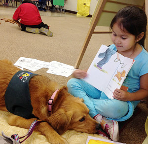 therapy dog preschool